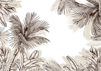 Tropical frame with sketchy palm leaves . Hand drawn vector illustration. Fotobehang