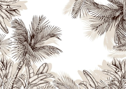 Tropical frame with sketchy palm leaves . Hand drawn vector illustration.