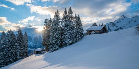 Wall Mural - Wintermorgen in den Alpen