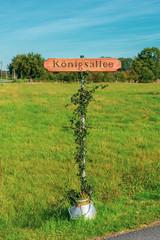 uriges Straßenschild aus Holz im Blumentopf. Standort: Deutschland, NRW, Borken