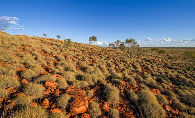 Obraz Large meteorite crater at the outback Australia – Wolf Creek crater with spinifex grass and boulders and blue sky as background in the morning sun - fototapety do salonu