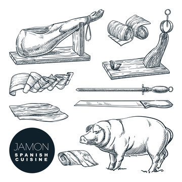 Delicious iberian pork jamon leg and cutting tools. Sketch vector illustration of Spanish gourmet cuisine