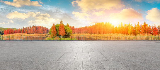Empty square floor and beautiful colorful forest in autumn Fototapete