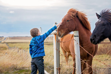 Beautiful child and horses in the nature, early in the morning on a windy autumn day