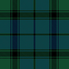 Beautiful classic green blue plaid pattern vector