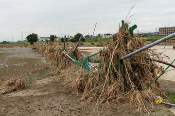多摩川台風被害