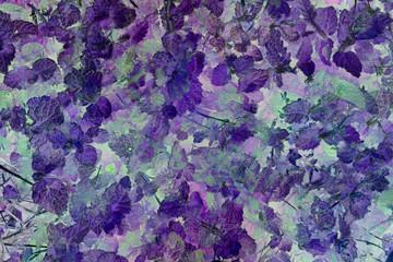 Fondo en tonos violeta de hojas de hierbabuena.