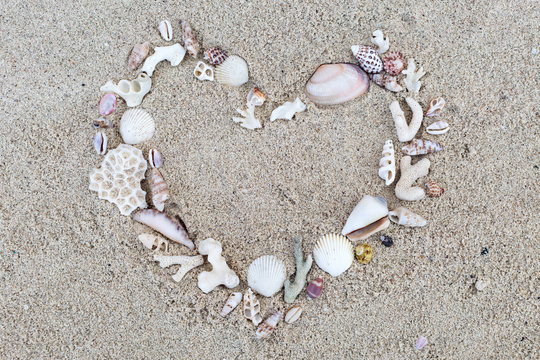 Seashells and corals heart frame on sand background.