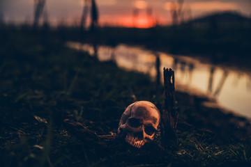Happy Halloween. Skull and scary scene.