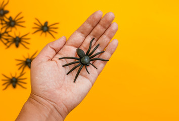 Halloween autumn holiday picture of hand with decorative black spiders against orange.