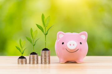 Piggy bank, coin stack, and growing leaves, on green tree background, saving concept