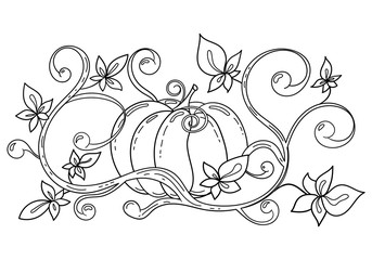 Coloring page with autumn halloween pumpkin for kids colouring book