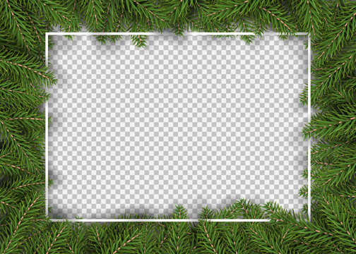 christmas fir tree border for decor and picture frame vector illustration.