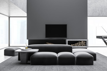 Stylish gray living room with fireplace and TV