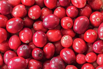 fresh cranberry background (filling pattern). ripe cranberry close-up texture.