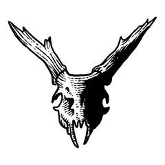 Deer head art design