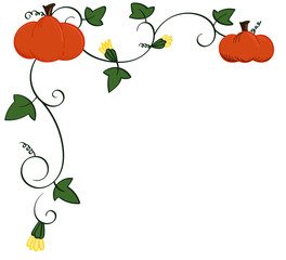 Pumpkin and vines top right border frame
