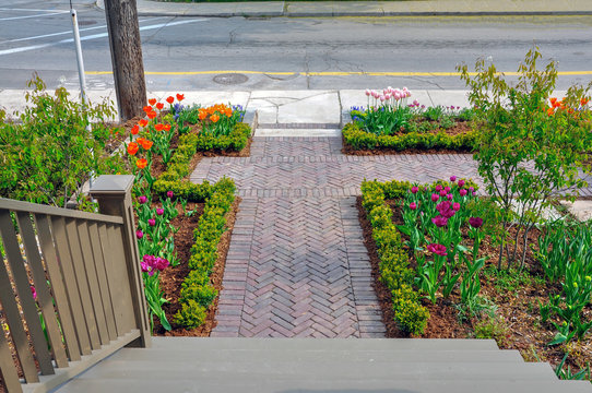This beautiful, urban front yard garden features a large veranda, brick paver walkway, retaining wall with plantings of bulbs, shrubs and perennials for colour, texture and winter interest.