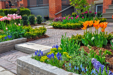 This beautiful, urban front yard spring garden features a large veranda, brick paver walkway, retaining wall with plantings of bulbs, shrubs and perennials for colour, texture and winter interest.