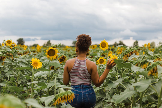 Back view of woman in sunflower garden