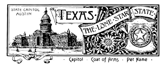 The state banner for Texas the lone star state vintage illustration