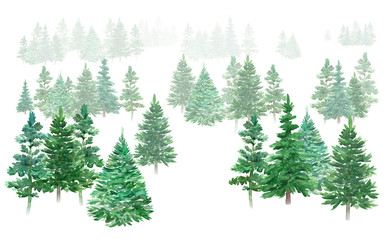 Watercolor winter forest. Christmas green trees. Spruce and holiday trees. Hand-drawn illustration.
