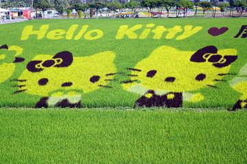 Farmers Create Hello Kitty Images in a Rice Field