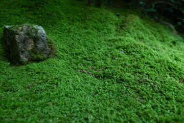 京都 瑠璃光院 お寺 写真素材 旅行 観光 日本庭園 寺 寺社仏閣