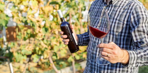 Handsome wine maker holding in his hand a glass of red wine and tasting it, checking wine quality while standing in vineyard. Small business, Homemade wine making concept. Long banner format.