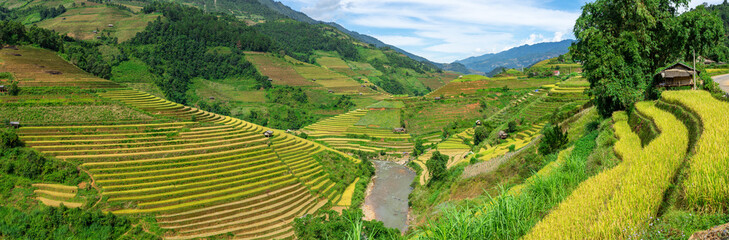 Panorama view of terraced rice field in Mu Cang Chai, Vietnam.