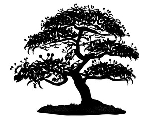 silhouette bonsai tree on white background vector design