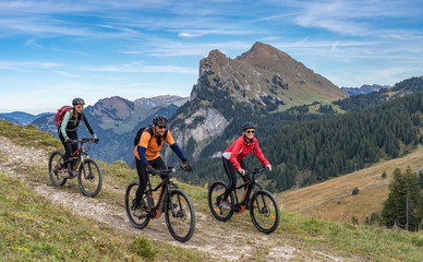 three happy senior adults, riding their mountain bikes in the autumnal atmosphere of the Bregenz...
