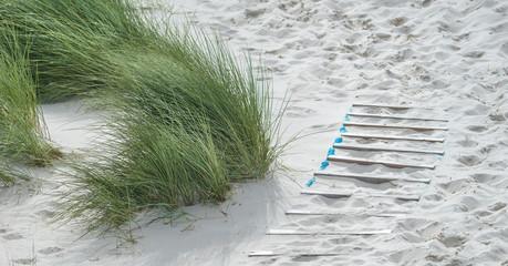Fototapete - Dünenweg auf Amrum an der Nordsee