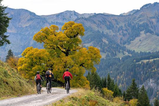 three happy senior adults, riding their mountain bikes in the autumnal atmosphere of the Bregenz Wald mountains near Mellau, Vorarlberg, Austria