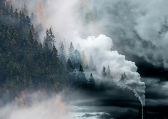 factory smoke covering pine forest double exposure global warming climate change
