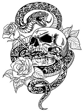 snake coiled round the human skull and roses. Angry dangerous serpent and flowers . Black and white tattoo style or t-shirt design vector illustration
