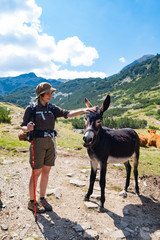 Papiers peints Ane Young woman traveler stand near cute donkey in the mountains