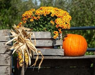 Fall Display with Pumpkin and Mum