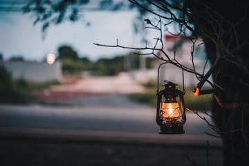 vintage lantern hanging of a tree in the evening