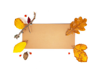 Autumn composition. Paper blank, dried flowers and leaves on white background. Autumn, fall...