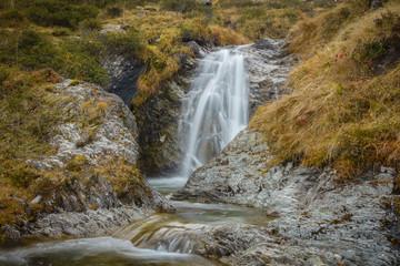 Wall Mural - kleiner Wasserfall in einem Wildbach im Zillertal