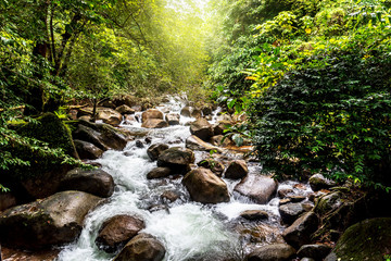 Recess Fitting Waterfalls Natural view waterfall Travel and relaxation in the Asian rainforest.
