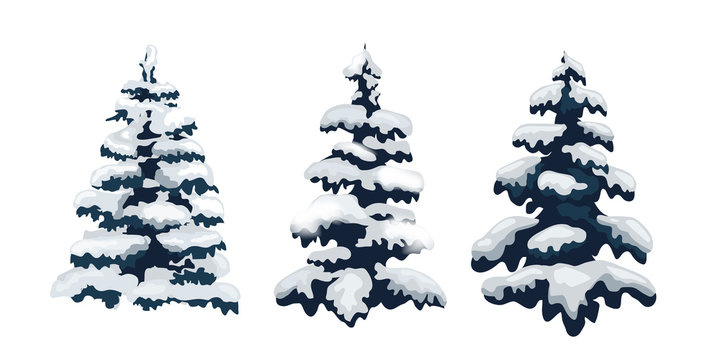 Snow trees set on isolated background. Christmas tree. Vector. Snow tree. Winter vect