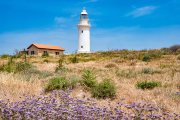 Deurstickers Cyprus Republic of Cyprus. Pathos. White lighthouse on the Mediterranean coast. Lighthouse against the nature of Cyprus. Flora Of Cyprus. Lilac flowers on the beach.