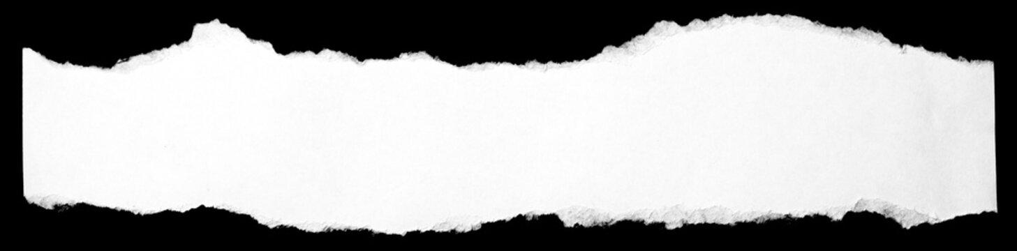 torn paper edge 5