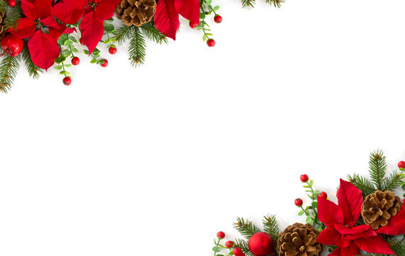 Christmas decoration. Frame of flowers of red poinsettia, branch christmas tree, ball, red berry on a white background with space for text. Top view, flat lay