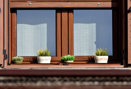 wooden window with blind decorated with flower pots
