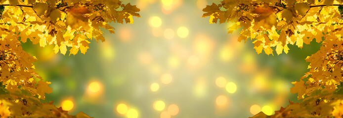 Wall Mural - Decorative autumn banner decorated with branches with fall golden yellow maple leaves on background of orange autumnal foliage and shiny glowing bokeh, place for your text, Indian summer.