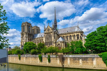 Wall Mural - Cathedral Notre Dame de Paris in Paris, France