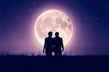Gay couples under the moonlight,3d rendering